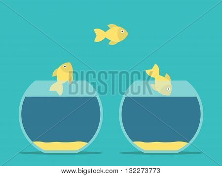 Fishes Moving Between Aquariums