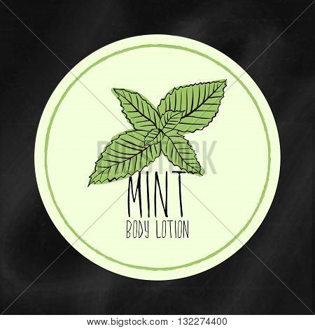 A set of labels with frames for beauty and health. Mint moisturizing lotion for body and hands. Vector