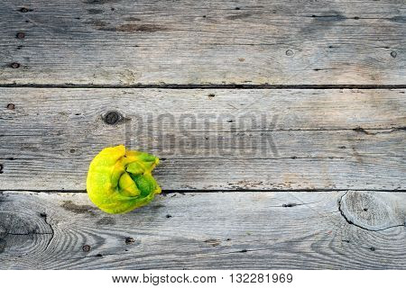 Top flat lay view of trendy ugly lemon from home garden on barn wood table Australian grown.