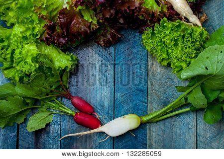 Fresh Salad And Radishes
