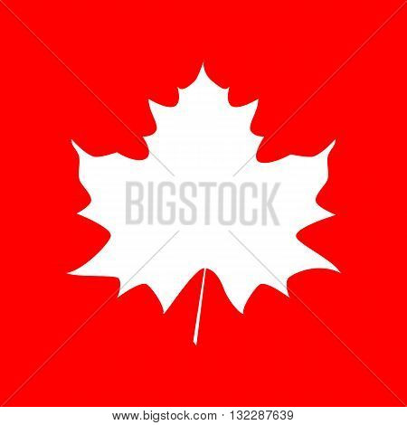 Maple leaf sign. White icon on red background.