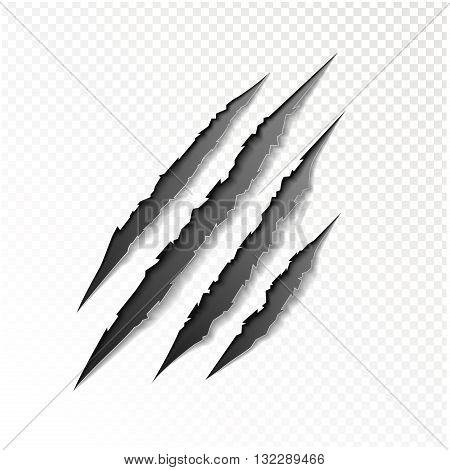 Claws scratching of animal realistic vector illustration.