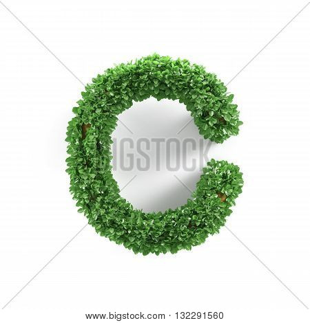 Green Leaves C Ecology Letter Alphabet Font