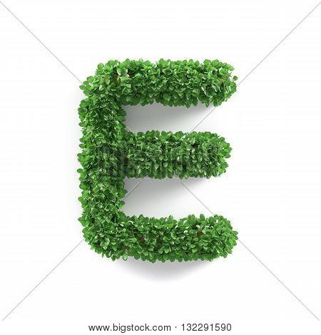 Green Leaves E Ecology Letter Alphabet Font
