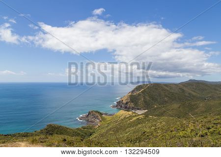 Beautiful landscape at Cape Reinga on the North Island in New Zealand.