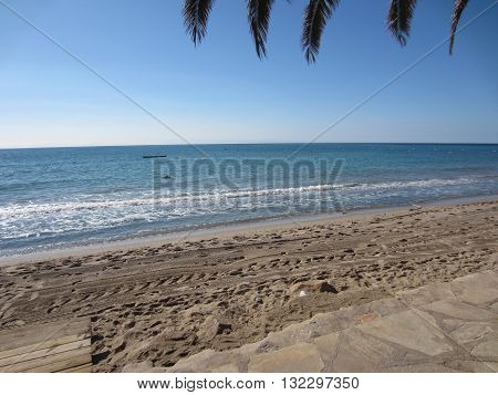 The beautiful blue sea and beach, seen from under the palm tree.