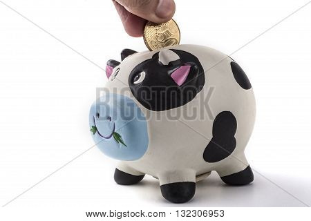 Coin For Animal