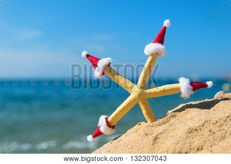 Funny starfish at the beach wearing hats of Santa Claus for Christmas