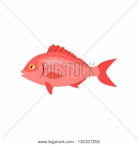 Sea fish in pink color isolated. Beautiful fish with a tail fin and flat style design. Water fauna animals live underwater in the ocean or the sea isolated on white background. Vector illustration