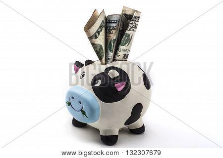 Dollar In Bank