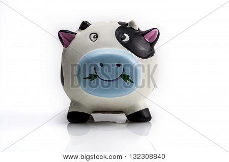 Reflection Of Piggy Bank
