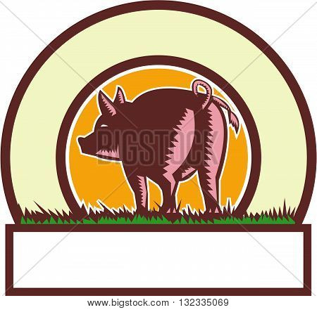 Illustration of a pig standing showing pigtail viewed from rear set inside circle done in retro woodcut style.
