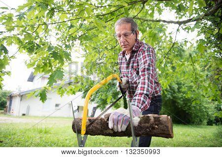Senior Man Sawing A Log Handsaw Closeup