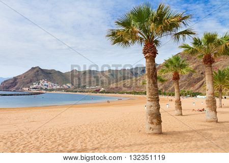 view of beach Las Teresitas with palms at sunny summer day, Tenerife island, Canaries Spain