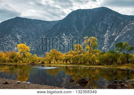 Beautiful autumn landscape with mountain river with rocks