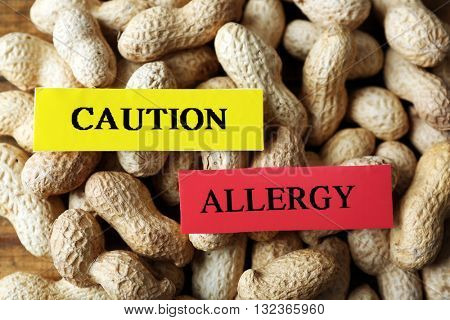 Allergy food concept. Pile of hazelnuts closeup