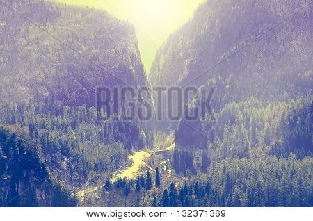 Road in the gorge to Ritsa lake. Caucasus. Abkhazia.