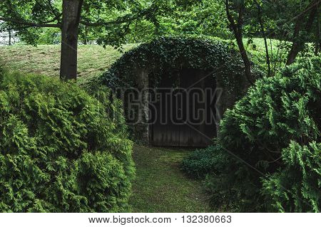 Old door in the ground in the woods