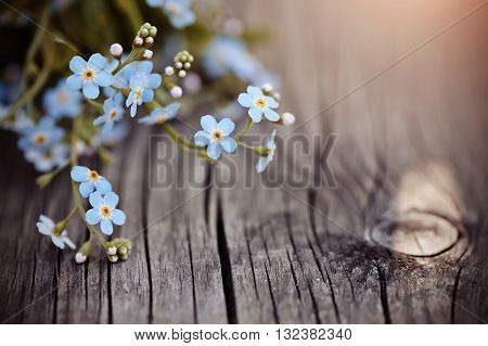 Blue forget-me-nots lie on a wooden table