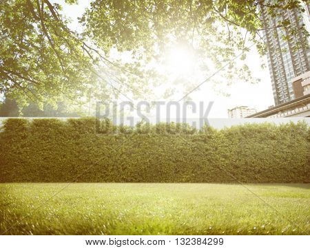 Space Backyard Scenic Relaxation Leisure Oxygen Concept