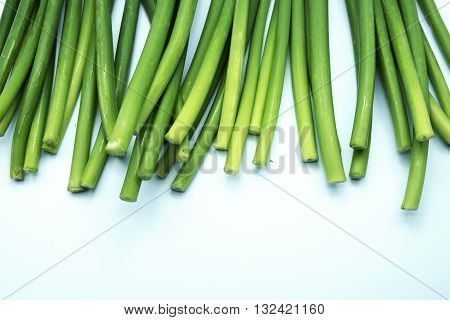 Stems/stalks of fresh green Allium Spring Onion flowers on blue-white background. Space for texts.