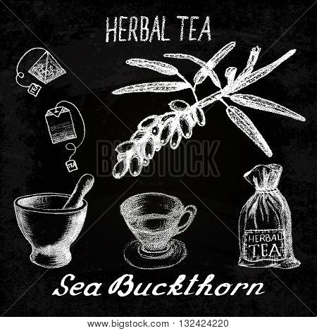 Sea buckthorn herbal tea. Chalk board set of vector elements on the basis hand pencil drawings. Sea buckthorn tea bag mortar and pestle textile bag cup. For labeling packaging printed products