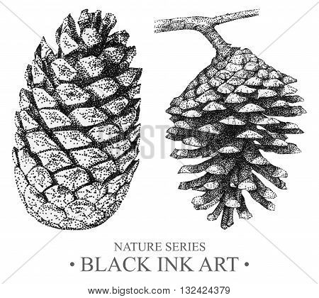 Illustration with cones drawn by hand with black ink. Graphic drawing pointillism technique. Element for design