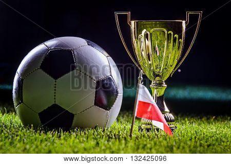 Football Cup And Polish Flag