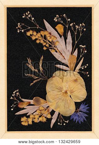 Picture made of dried plants and flowers. Hand made old natural picture.