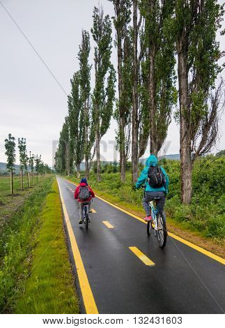 Ride In The Cycleway