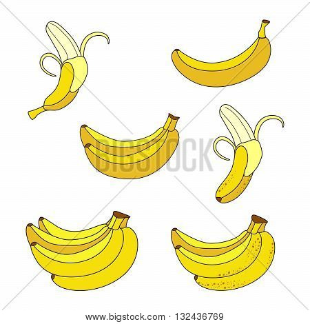 Set of Yellow Bananas. Collection of Different Overripe Bananas Single Banana Peeled Banana Bunch of Bananas.