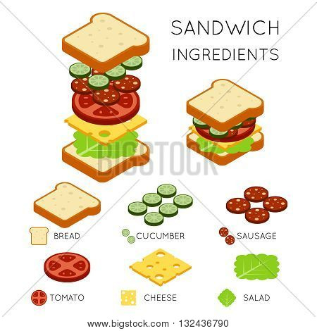 Vector sandwich ingredients in 3D isometric style. Sandwich illustration, food sandwich, design american sandwich burger