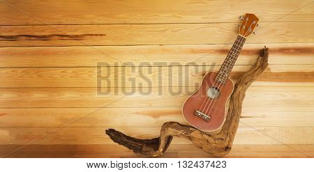 ukulele and twig in vintage style colour with jointed wooden background ukulele on timber or twig on wooden table and blank space area for text background classic brown ukulele for summer