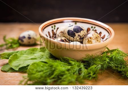 some small quail eggs in dish with fresh dill and sorrel