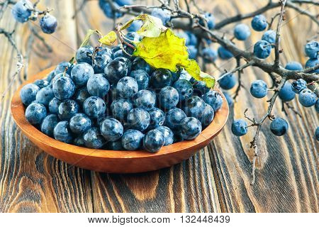 Autumn still life with blackthorn branches, leaves and fresh juicy ripe berries in a bowl on a wooden table. (Prunus spinosa or sloe)