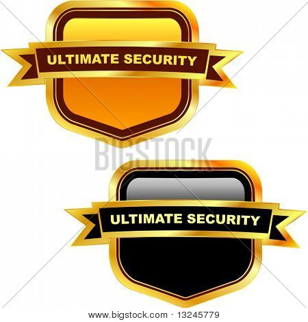 Ultimate secutity. Vector shields.