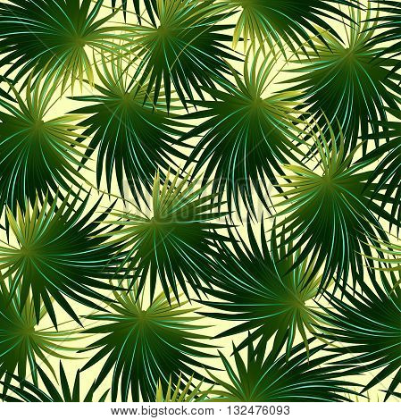 Tropical cabbage palm leaf in a seamless pattern .