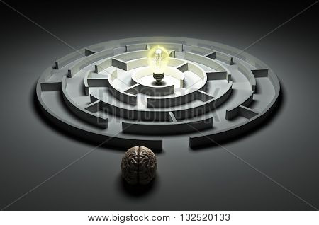 Brain Concept Is The Idea Of The Search At The Entrance Of The Rownd Labyrinth In The Center Of Whic