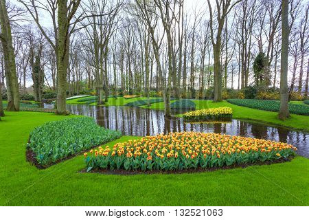 Landscape With Blooming Beautiful Flowers And Water Stream In Keukenhof