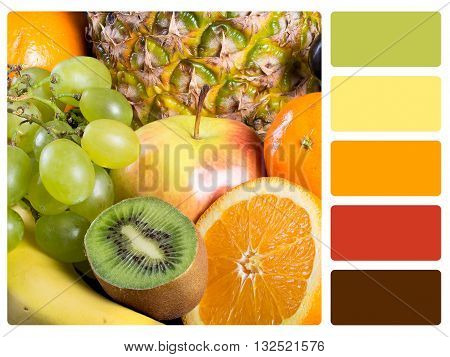 Colour palette with complimentary swatches - Stock Image.