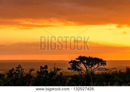 Sunset on the Savannas outside of Brasilia, Brazil