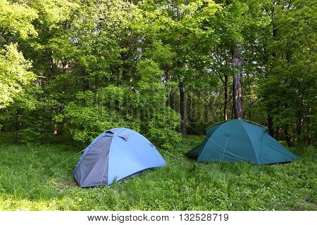two blue tents in green deciduous forest bright summer day