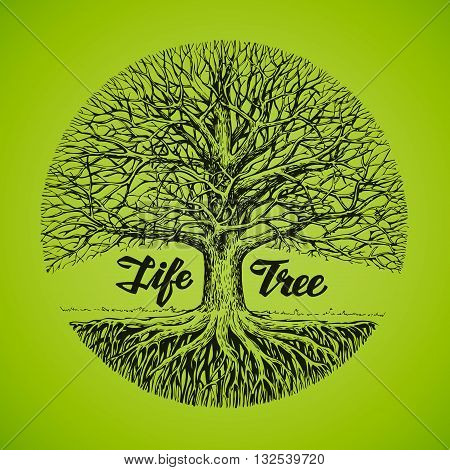 Hand drawn vector sketch tree with roots. Ecology, environment. Nature