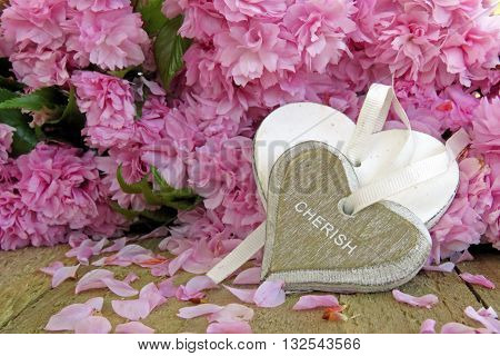 Heart with cherish engraved and a blossom background