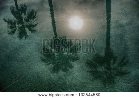 silhouettes of the palm trees reflecting in the moon light blue water of the pool