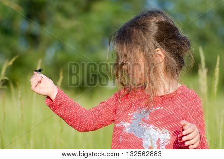 Young child looking at damselfly on hand. A small girl looks intently at an insect sitting on her finger in a beautiful meadow