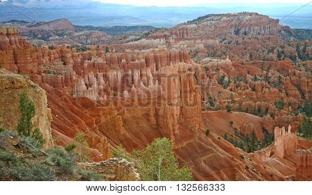 rock columns formed in red sandstone called
