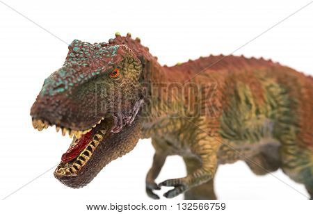 tyrannosaurus opening the mouth on a white background