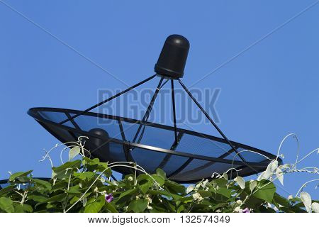 Satellite dish transmission data on background blue sky