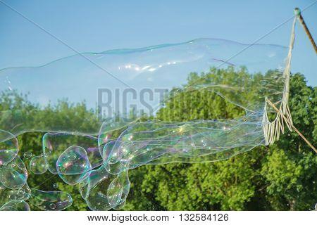 Many Soap Bubbles In Park